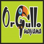 @OrgulloGuayana